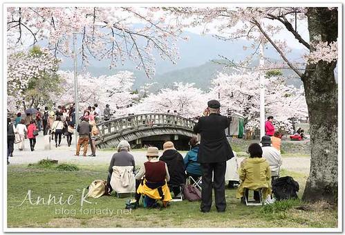 櫻京阪_嵐山
