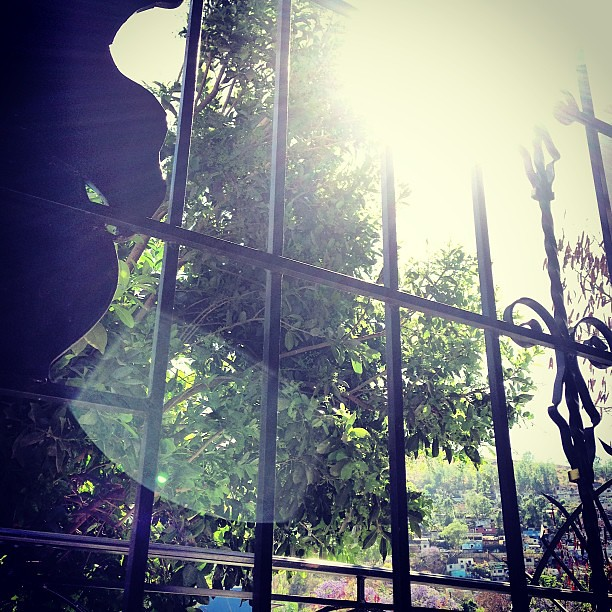 Destello de sol. #oaxaca
