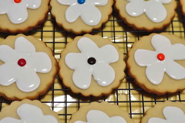sugar cookies 12