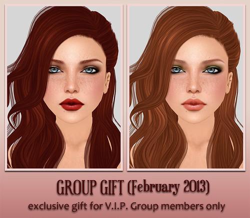 V.I.P. Group Gift February 2013