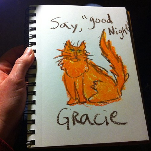 057:365 Goodnight Gracie #adrawingaday #catagram by allida