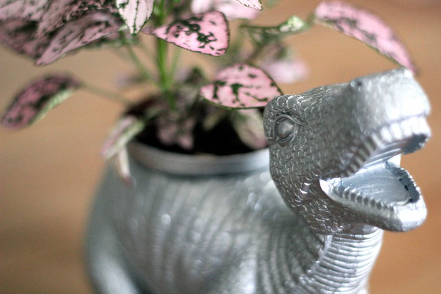 Monday: a dinosaur planter given a pretty plant and silver paint