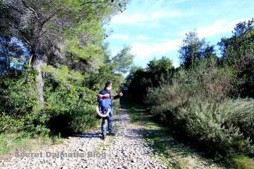 Hitchhiking on Scedro
