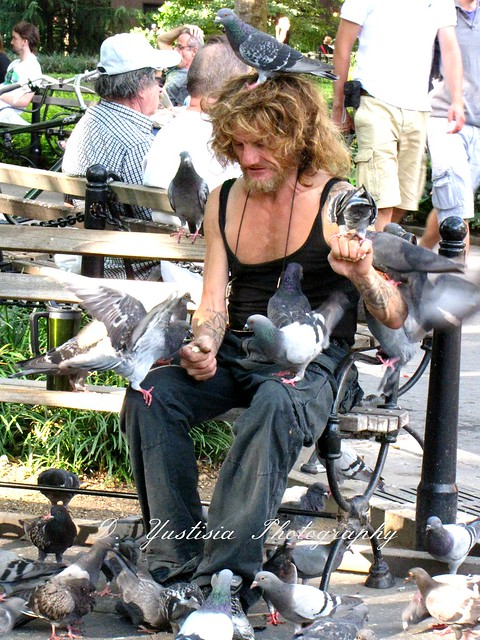 The Birdman of NYC