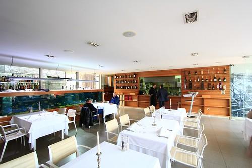 Fosa - the interior