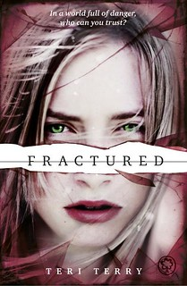 Teri Terry, Fractured