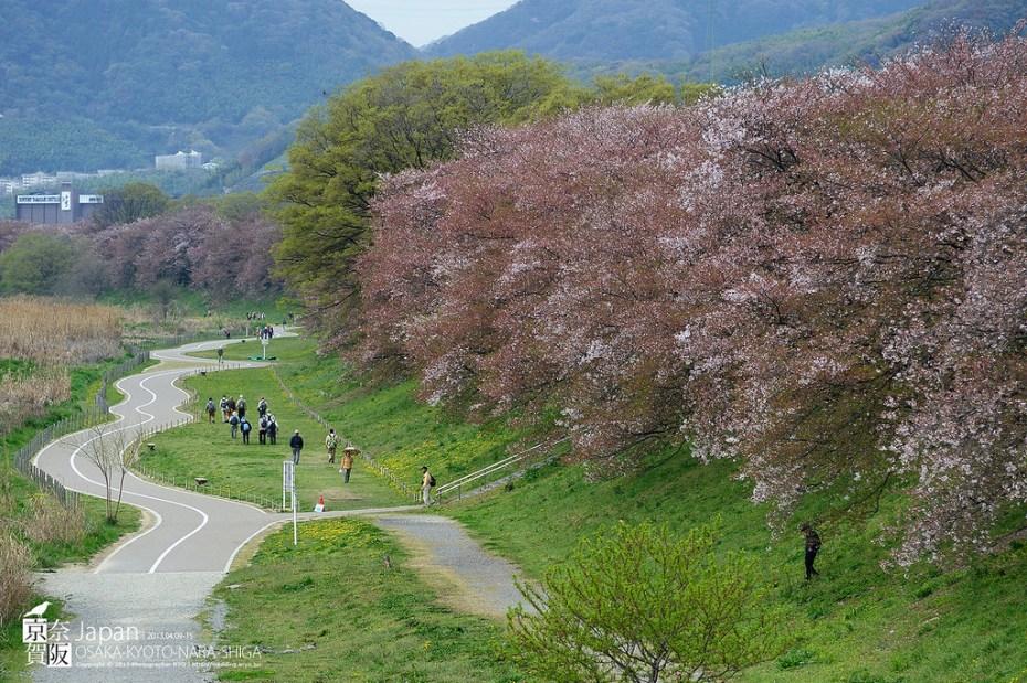 Japan-0257