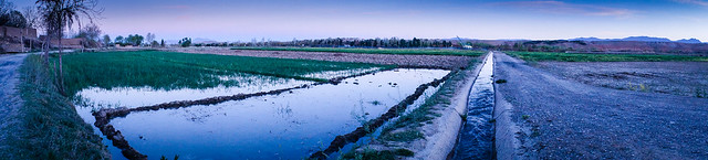 Farmland pano