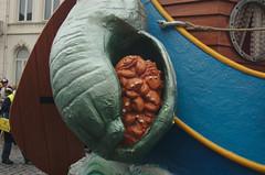 Krabben aan de Blauwe Schuit