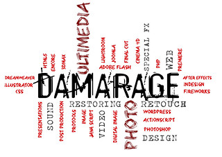 presentación_logo_DAMARAGE