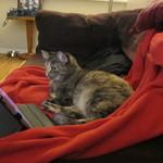 Chai Watching TV
