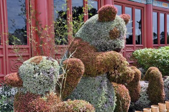 Panda topiary 2013