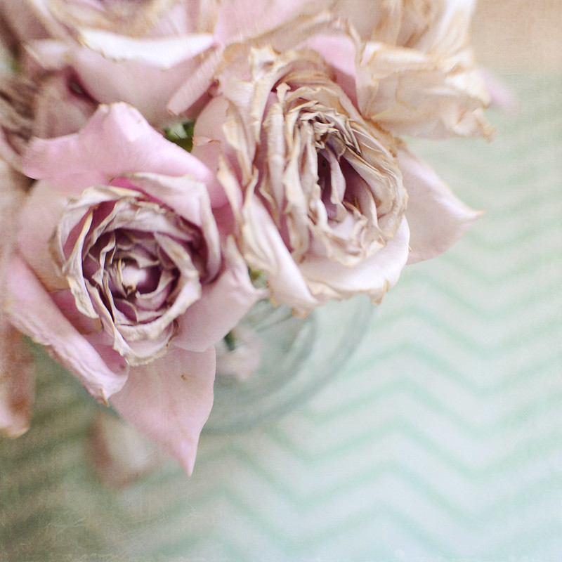 Mint Chevrons dried roses gallery32 photography
