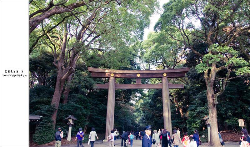 Tokyo Sights - Meiji Shrine and Harajuku 明治神宮 原宿