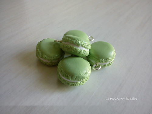 lot_macarons_pomme