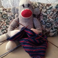 Phillip loves to knit!