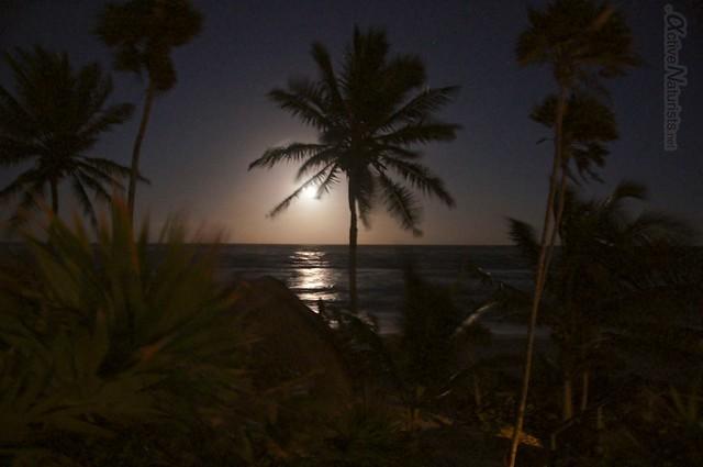 naturist full moon 0019 Tulum, Quintana Roo, Mexico