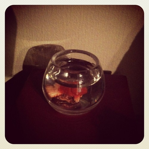 Goodnight fishy!