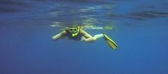 Snorkeler Floating 2
