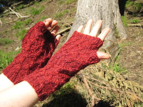 Mitts_2013_01_16_Reticulated-Mitts_2