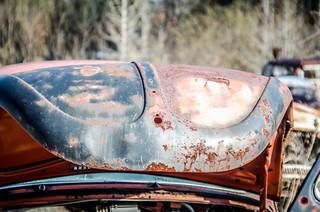 Rusty Beetle Hood