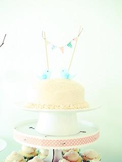 Smash Cake Edited (2)