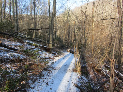 Dusting of Snow at the Low Trail