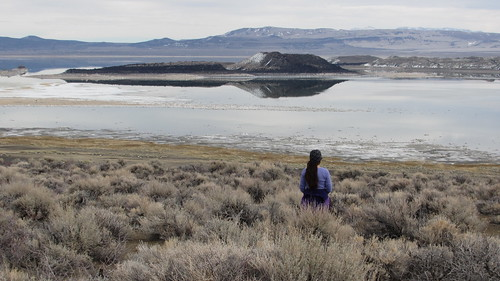 Mono Lake Black Point Fissures