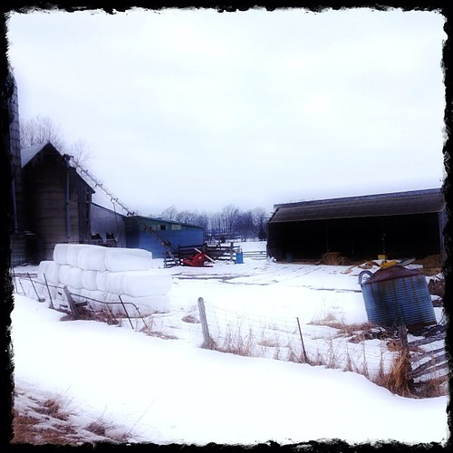 Mar 6 - 'Y' {barn YARD}. #photoaday #princeedwardcounty #barn
