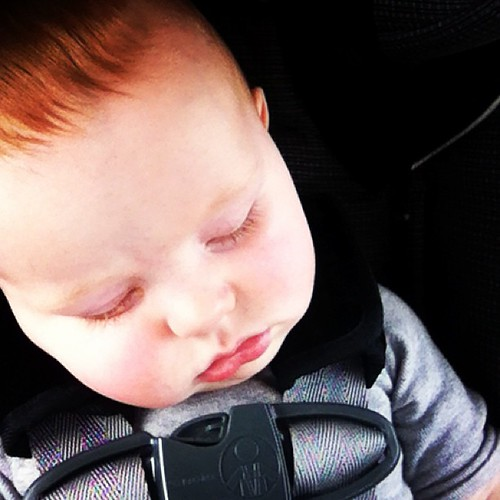 My precious copilot. He has been a perfect baby on this trip. #meganandfinngetnashy #finneganfrancis