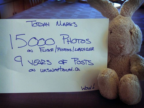15000 Photos on Flickr by LexnGer
