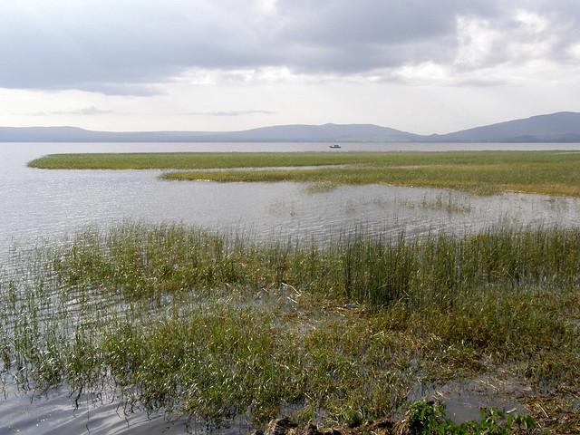 Lago Awasa