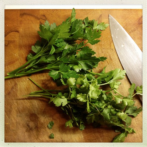 Chopping cilantro & flatleaf parsley for Modern Moroccan Cinnamon-scented Chickpea & Lentil Soup