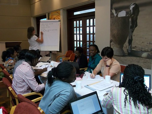 Gender experts discuss strategies for integrating rights into analysis of women's empowerment in livestock programs