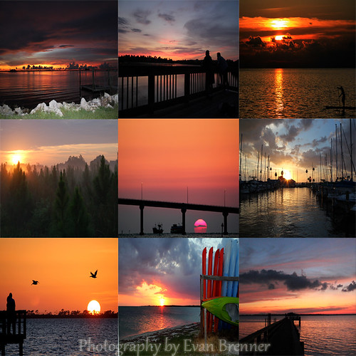 9 Reasons to Love West Central Florida by photographyalive