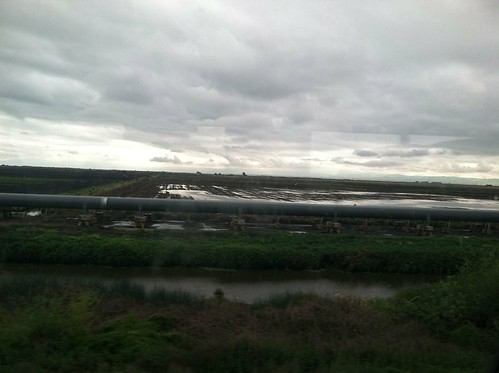 Irrigation from Amtrak