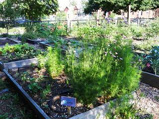 gardens 160 (1)