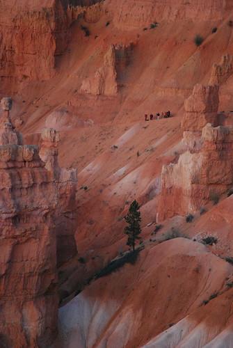Sunrise watchers at Bryce Canyon National Park