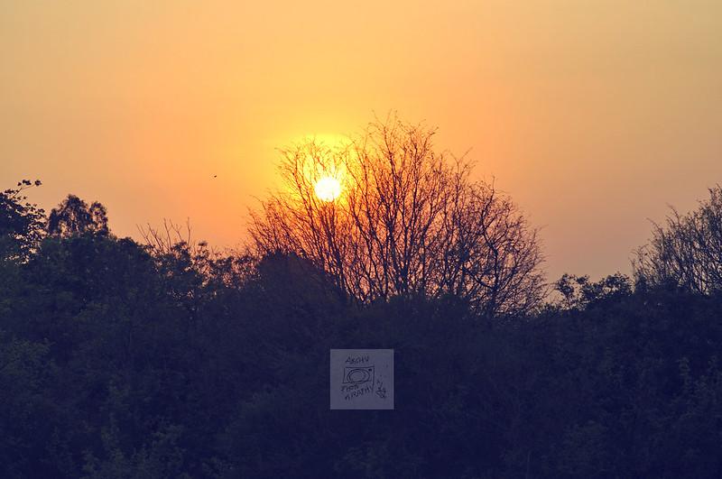 Day 102.365 - Sunset