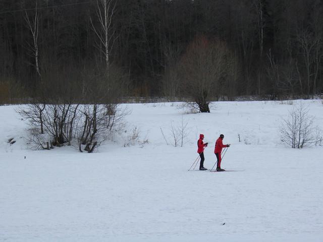 Лыжники // Skiers