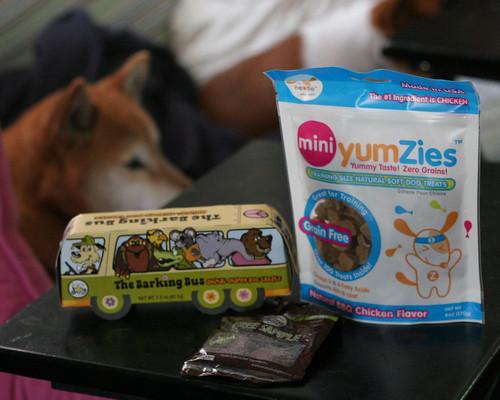 Bugsy's Box: array of treats