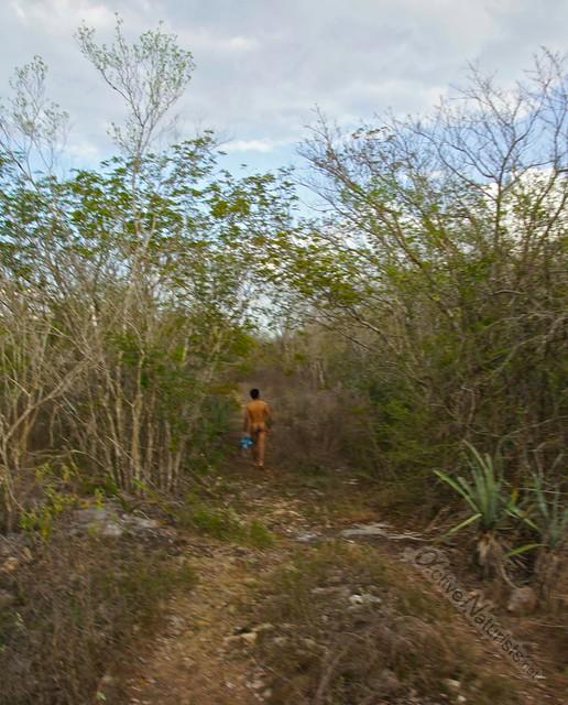 naturist 0016 cenotes near Merida, Yucatan, Mexico