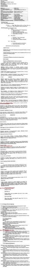 DTU Syllabus - Information Technology