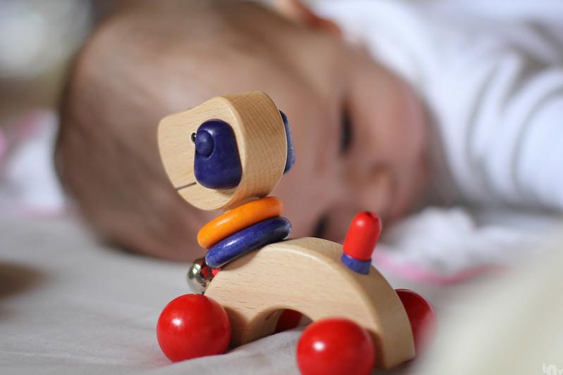 Dexter & his toy