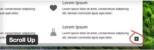 Scroll Up - Useful WordPress Plugins