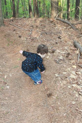 Slaughterhouse Trail - Trail Maintenance
