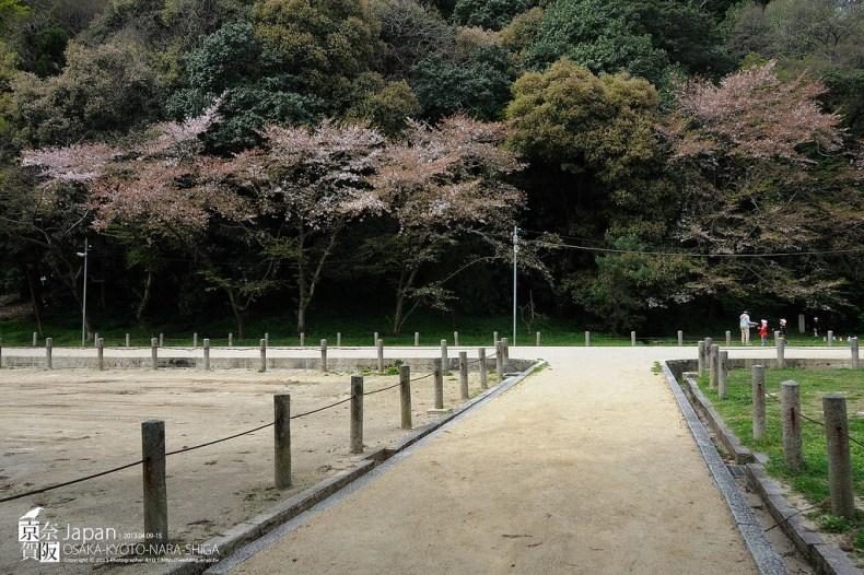 Japan-0230
