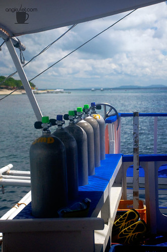 Diving in Balicasag Island, Bohol