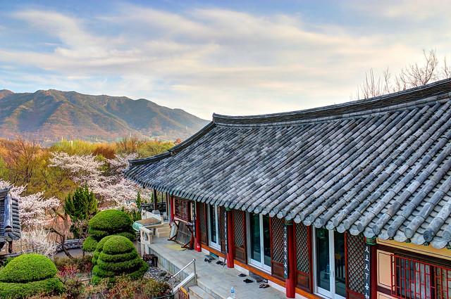 Anderson, South Korea Daegu
