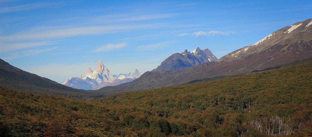 Uninterupted, virgin Patagonian forrest towards the south. The granite tower of Cerro Fitz Roy (3359m) dominates the skyline 100km south of this peek through.